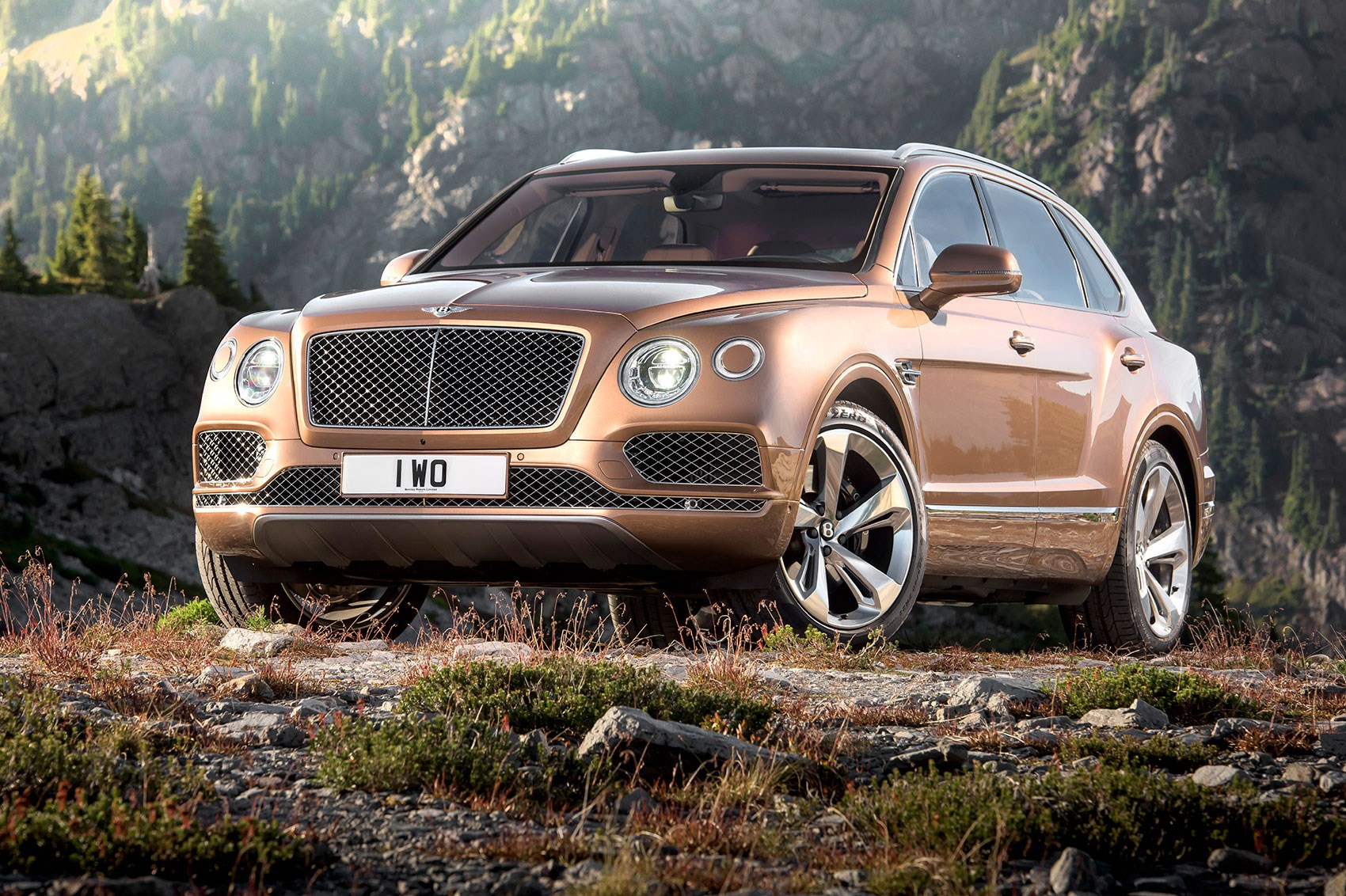 Bentley Bentayga I 2015 - now SUV 5 door #2