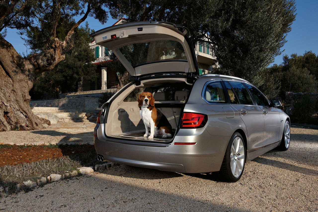 BMW 5 Series VI (F10/F11/F07) 2010 - 2013 Station wagon 5 door #7