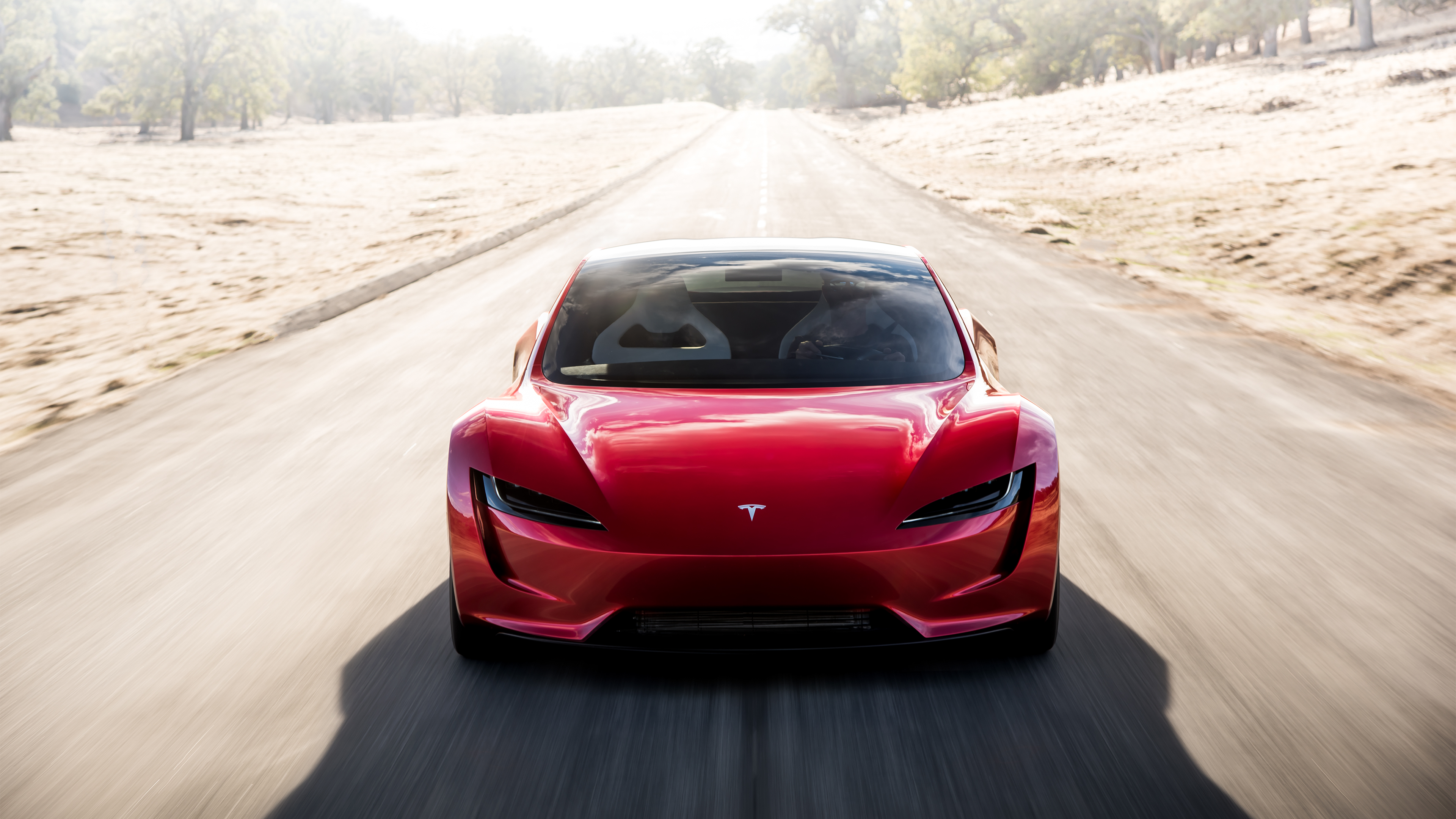 Tesla Roadster Concept 2017 - now Targa #5