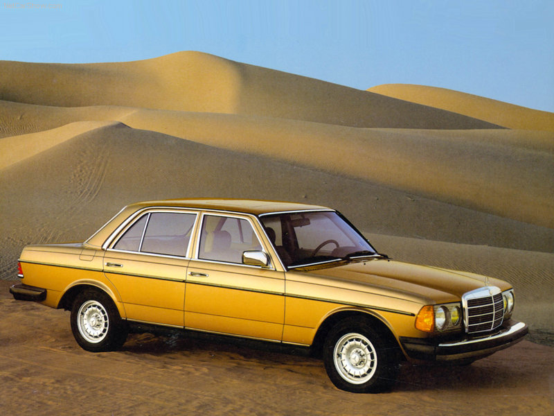 Mercedes-Benz W123 1975 - 1985 Coupe #8